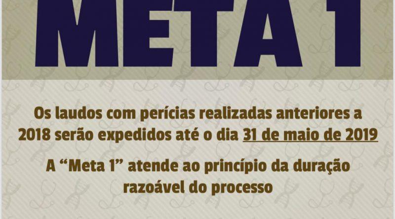 META 1 – IMESC